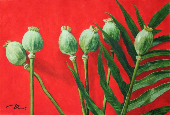 Green on red. Poppies. Daria Kirichenko. Graphics & art