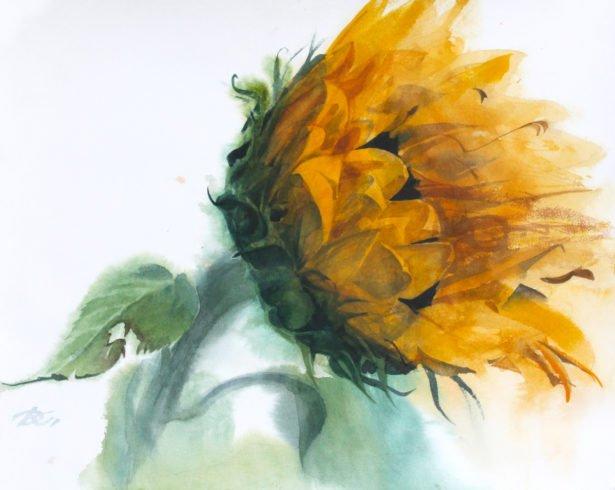 Sunflower Daria Kirichenko. Graphics & art