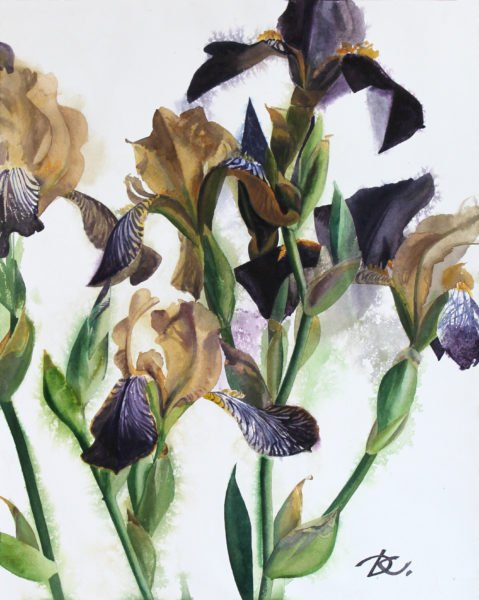 Pattern of irises Daria Kirichenko. Graphics & art